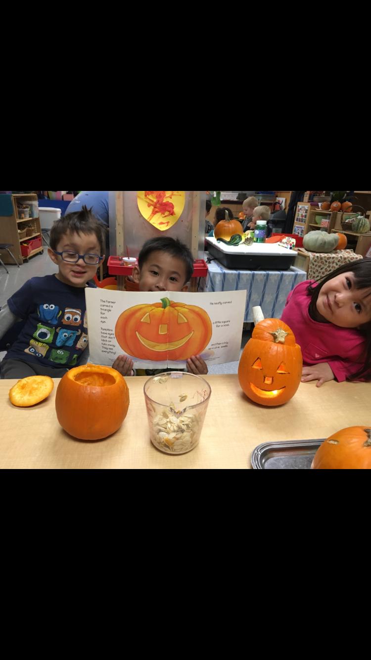 Pumpkin Seed Bonanza!